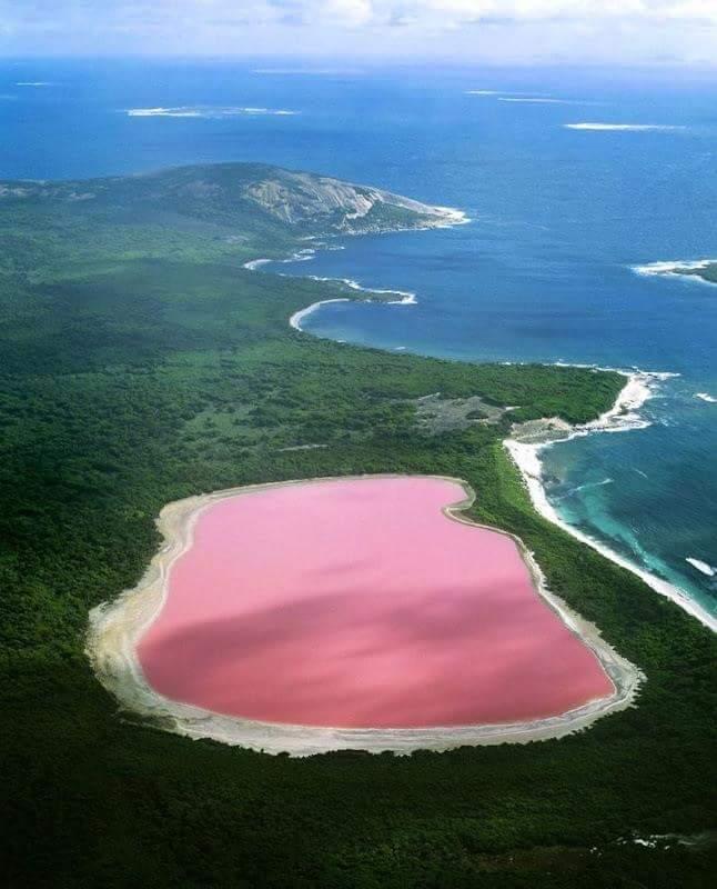 Il lago rosa in Australia