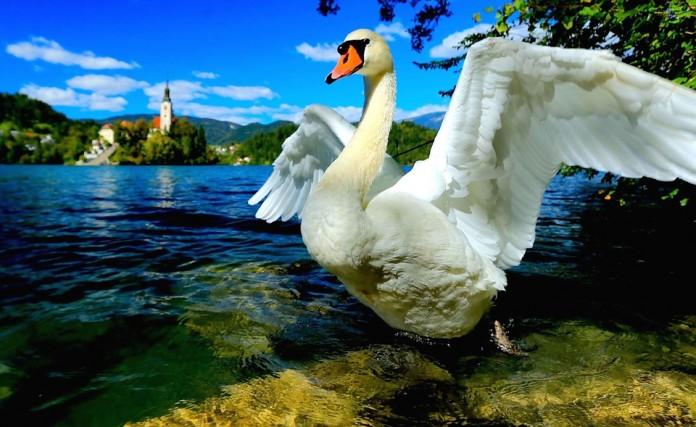 Lago di Bled, in Slovenia